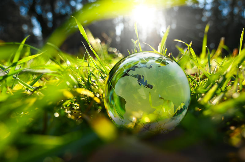 Green glass globe with green leaves an d morning sunlight
