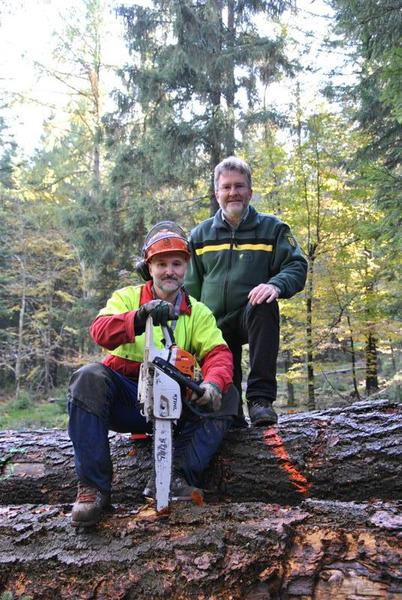 Waldwirschaft Und Staatlicher Holzverkauf Landkreis Calw